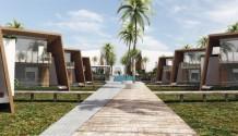 Proyecto Flats Duplex y Casas Las Palmeras de Bocapan en Zorritos Tumbes