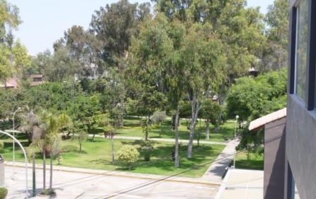 Vista a parque